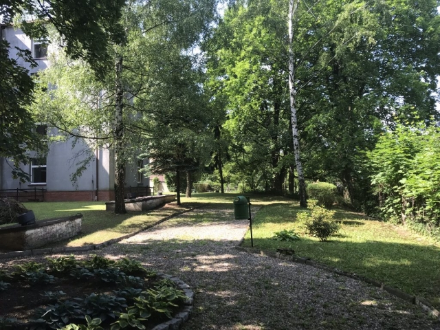 Ogród na tyłach budynku